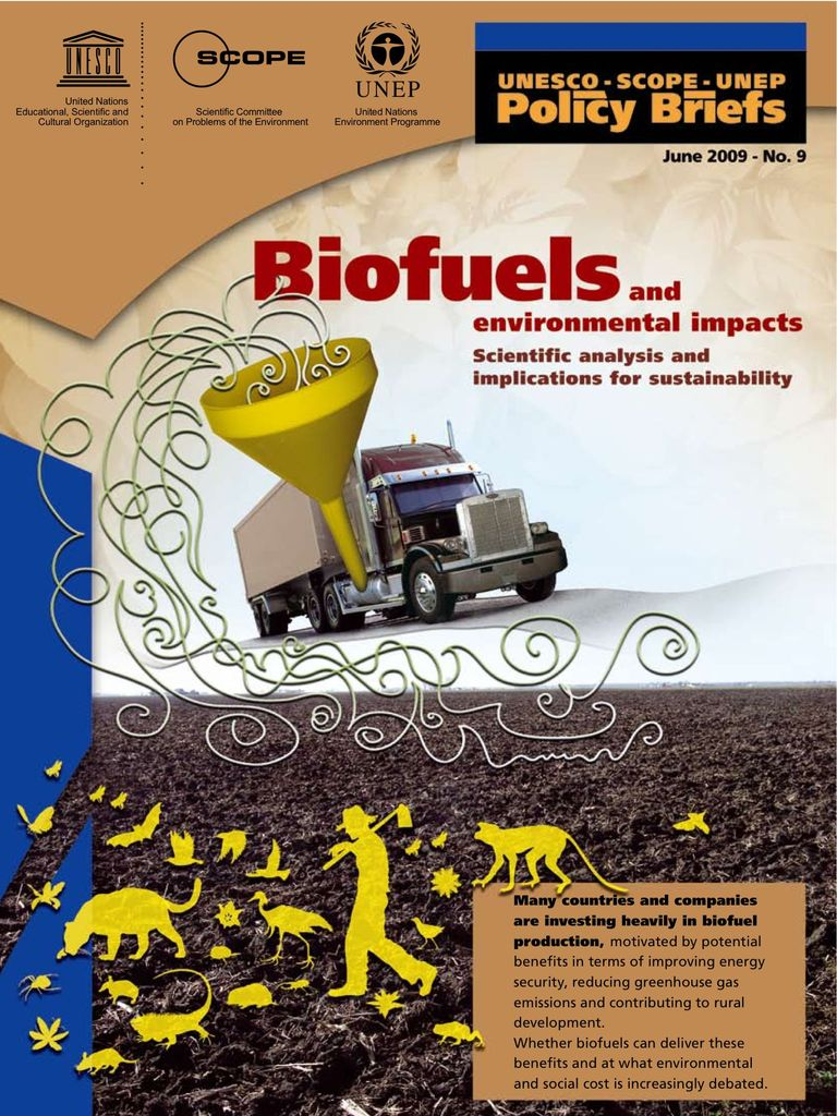 Policy Brief No. 9: Biofuels and Environmental Impact  - Scientific Analysis and Implications for Sustainability