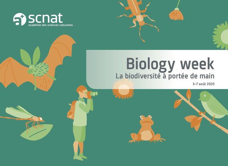 Biology week 2020 biodiversité