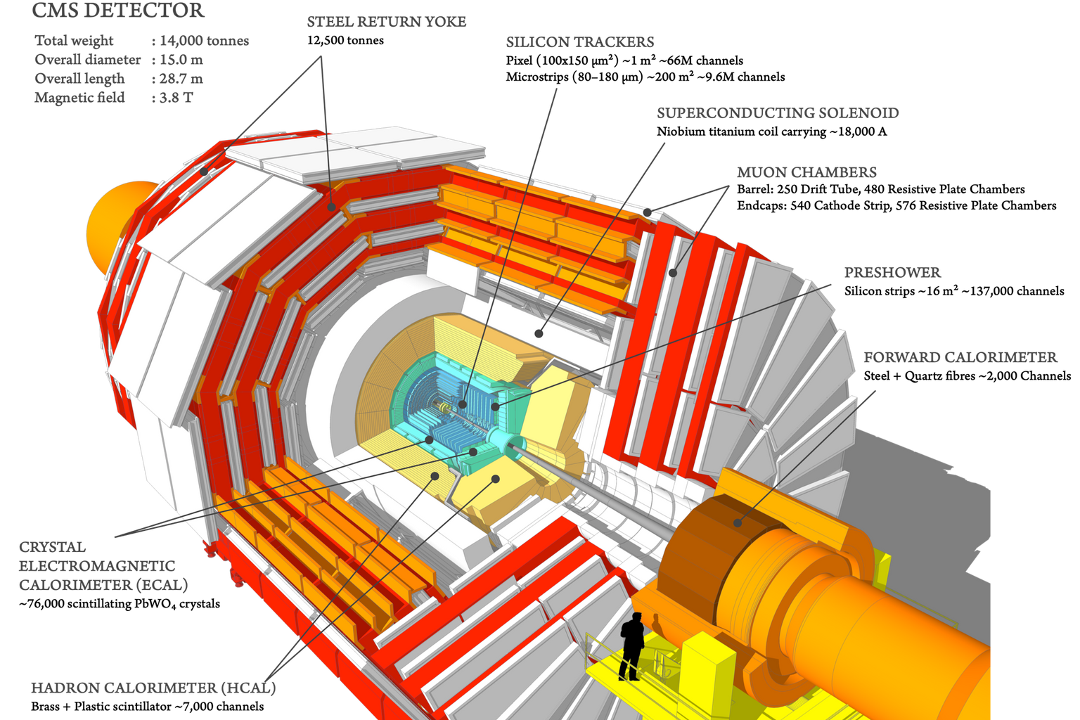 The detector of the CMS experiment at CERN: In the vacuum tube of the circular accelerator (grey, surrounded by a protective envelope drawn in orange) protons move in both directions, causing them to collide in the centre of the detector and produce new particles in the process. These particles are very diverse; each type is detected by different layers of the detector. The second innermost layer is the crystal detector (green), which can detect photons (light particles), among other things. Such crystal detectors – on a smaller scale – form the basis of PET scanners.