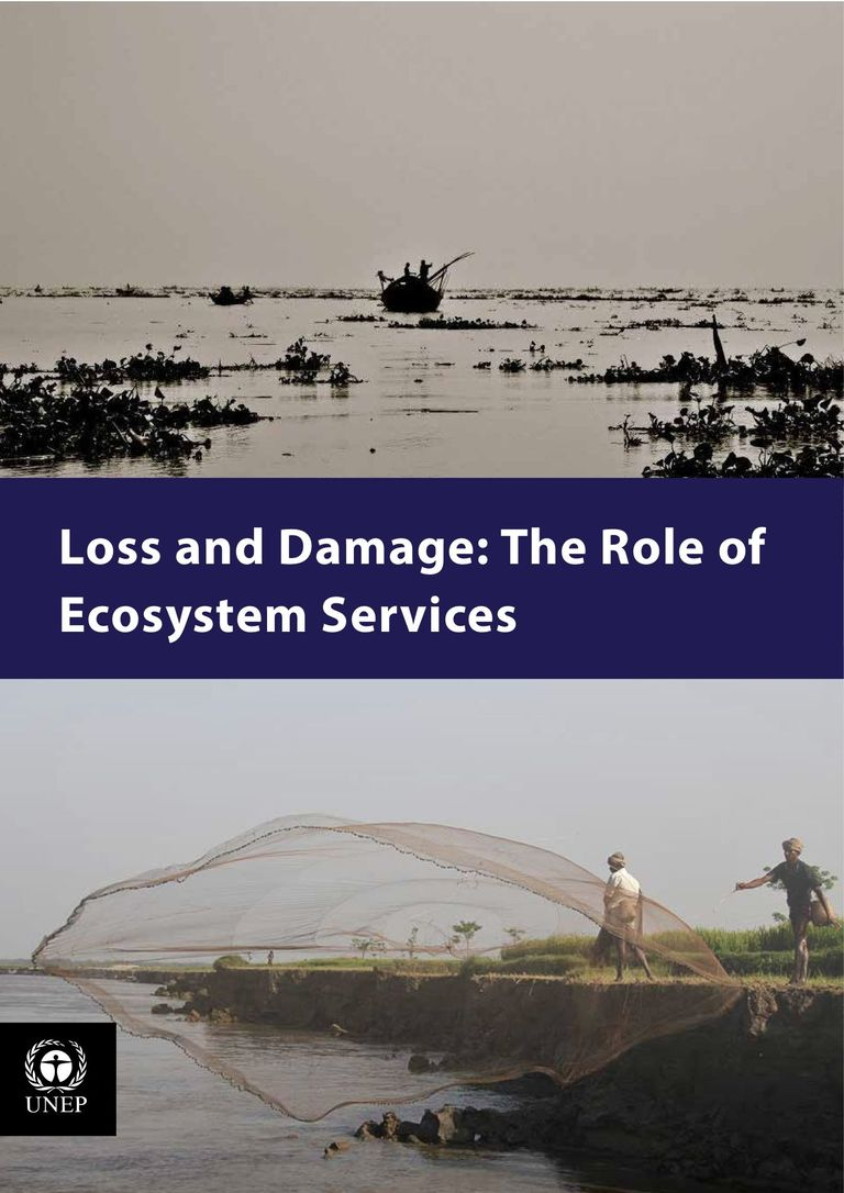 Loss and Damage: The Role of Ecosystem Services (PDF)