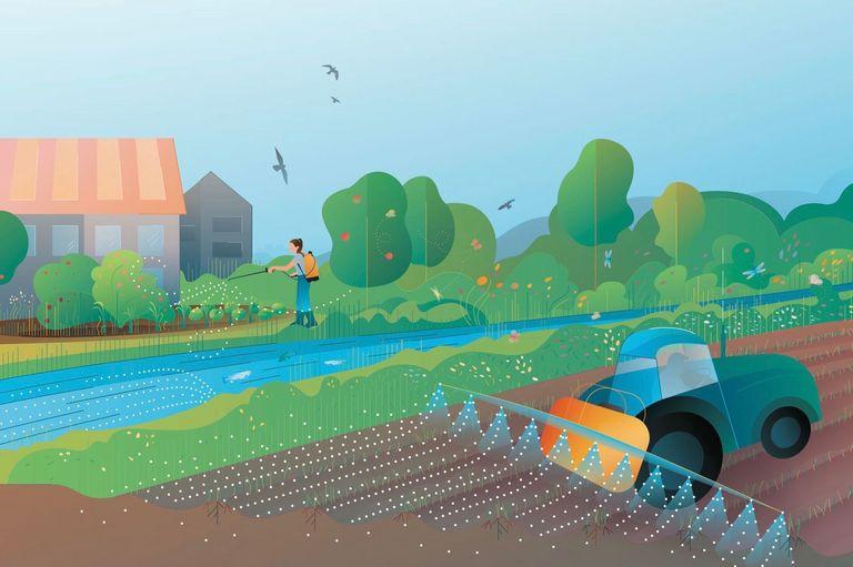 Pestizide: Auswirkungen auf Umwelt, Biodiversität und Ökosystemleistungen