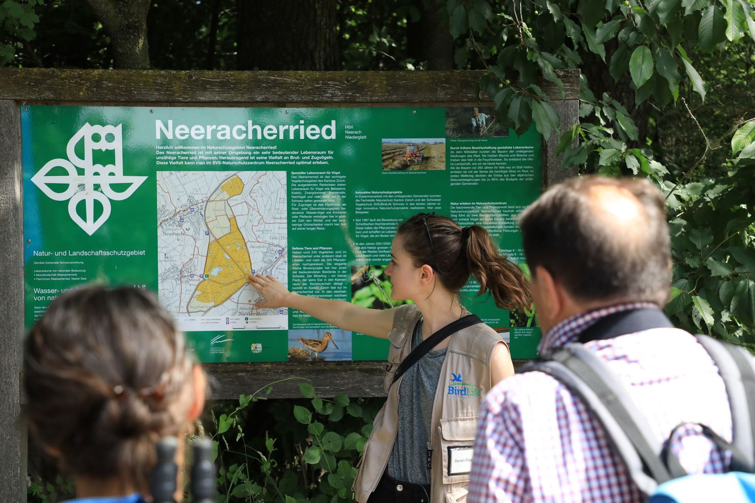 Neeracherried (Bild 02)