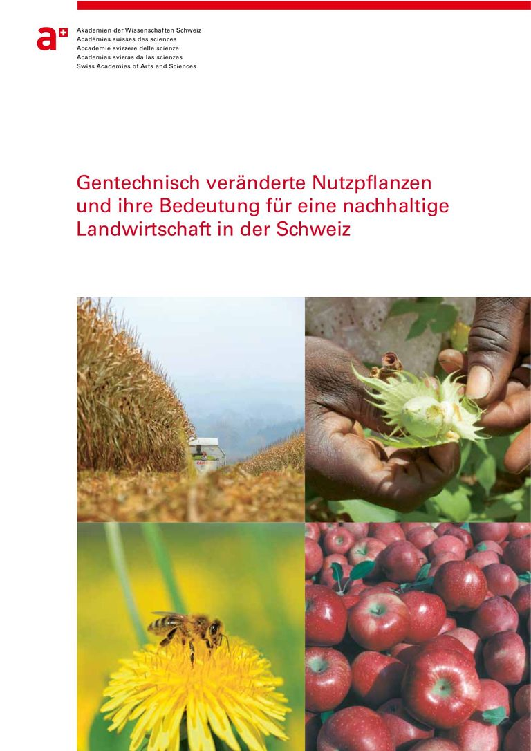 Report: Genetically modified crops and their importance for Swiss agriculture