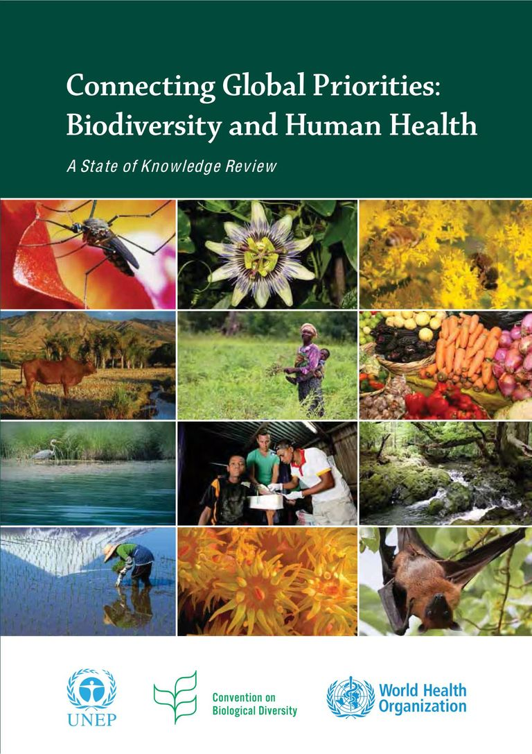 Full Report: Connecting global priorities - biodiversity and human health