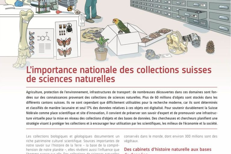 L'importance nationale des collections suisses de sciences naturelles