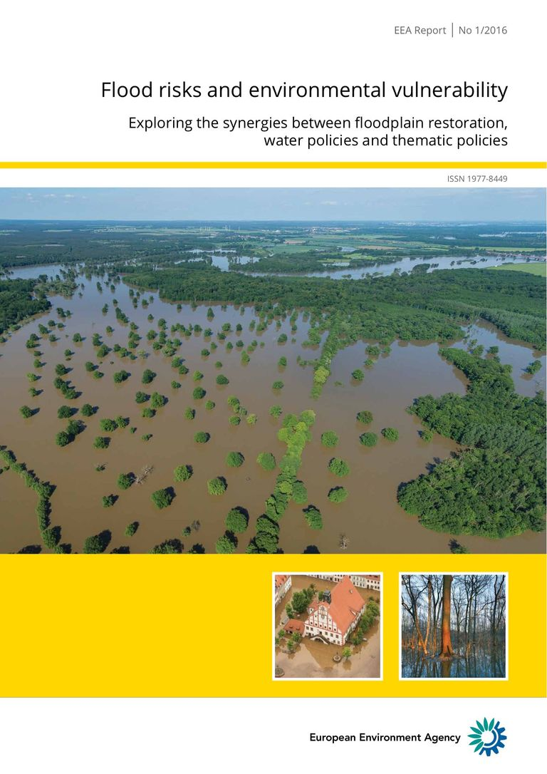 EEA report No 1/2016: Flood risks and environmental vulnerability: Floodplain management: reducing flood risks and restoring healthy ecosystems
