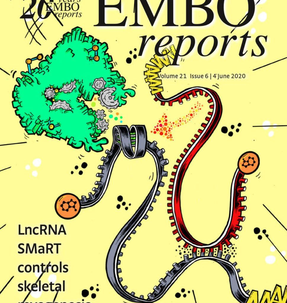 EMBO reports 2020