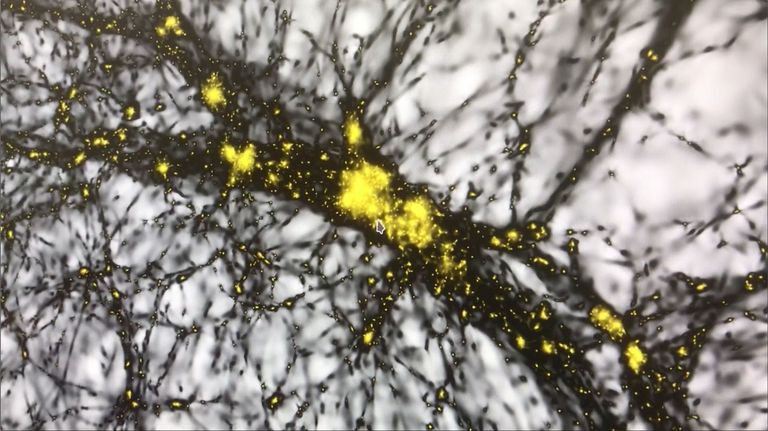 Extract from the computer simulation created by Dr. Joachim Stadel and other scientists from the University of Zurich: every yellow dot is a halo of dark matter in which a galaxy is embedded. The dark 'threads' are places in the universe with a high density of dark matter, while in the light spots ('voids') only few dark matter is present.