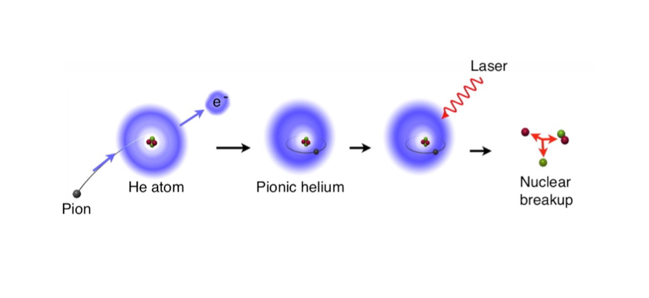 To produce pionic helium, one of the two electrons of the helium atom is replaced by a pion. This artificially created atom can then be examined with a laser beam.