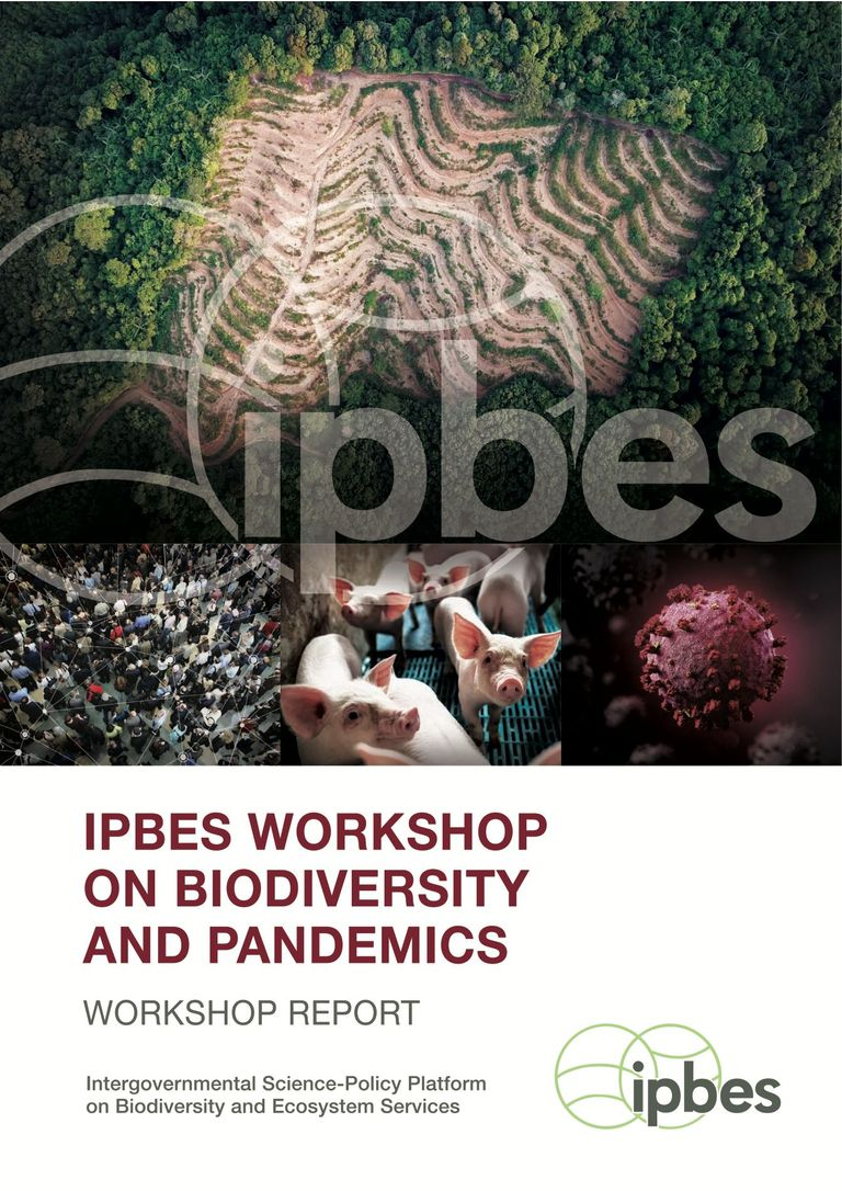 IPBES workshop on biodiversity and pandemics