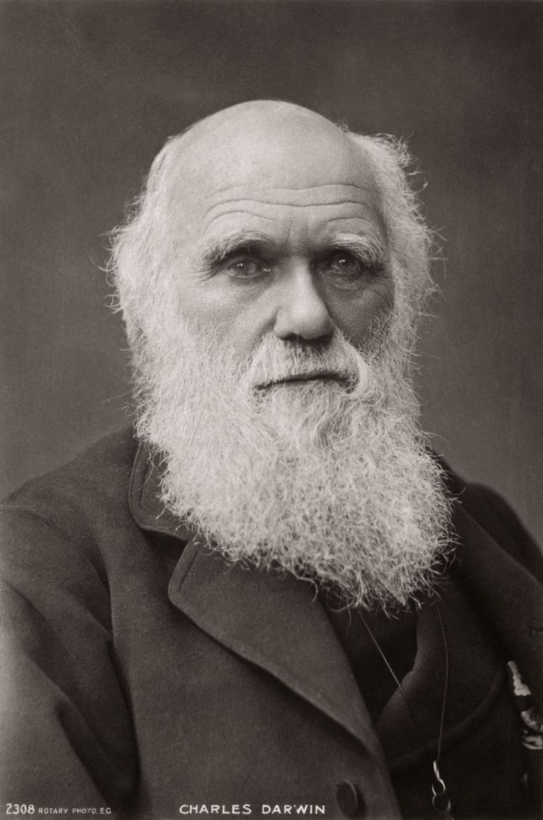 charles darwin scientifique évolution