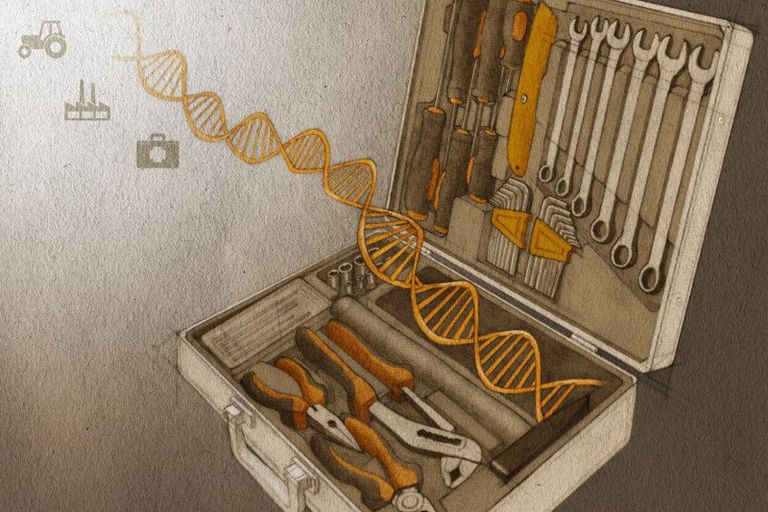 CRISPR - genetic engineering tool