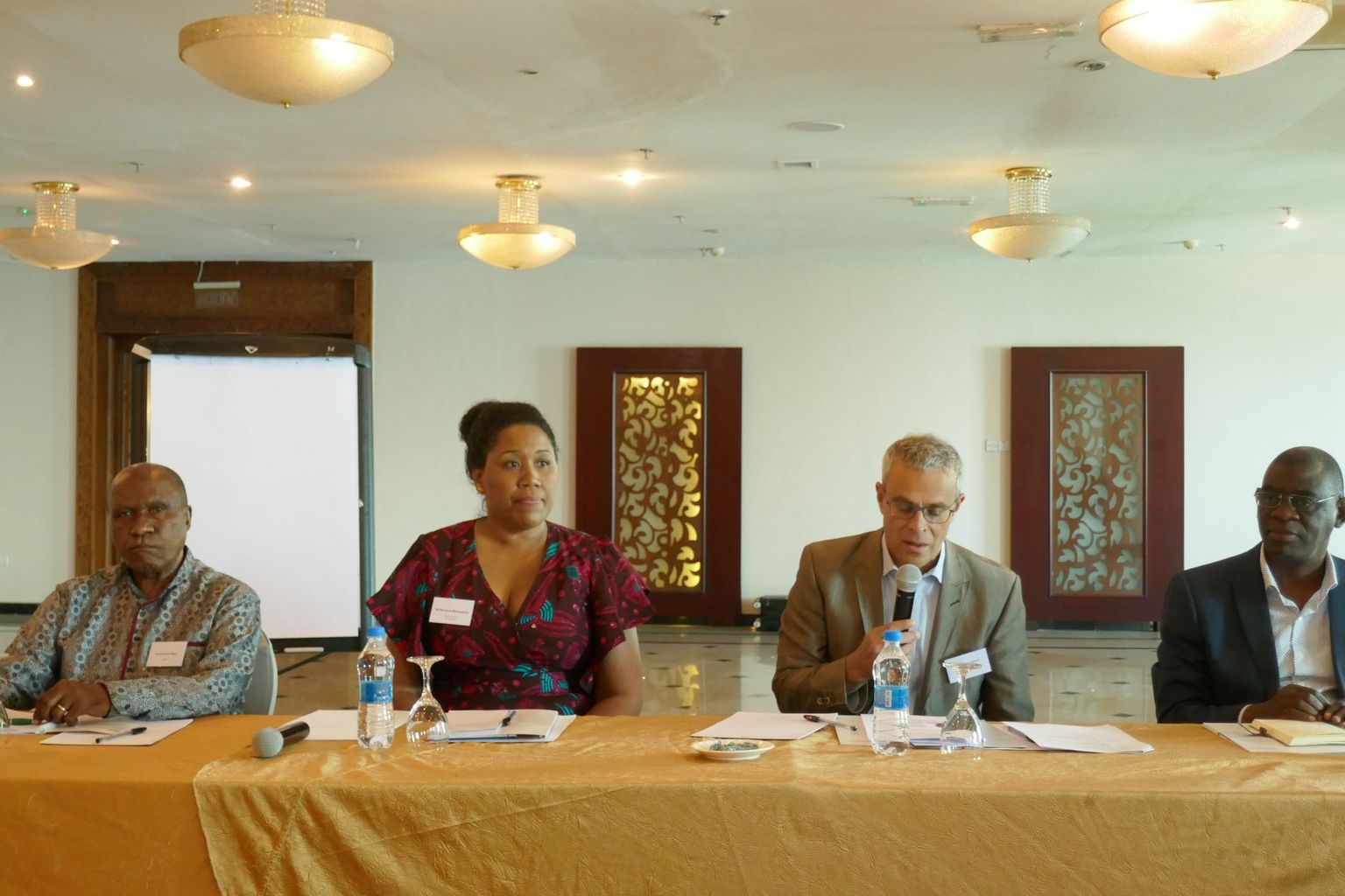 Panel discussion, Tansania 2018 with Prof. P.B. Mihyo, Marianna Balampana, Prof. Laurent Goetschel & Dr. Honorati Masanja