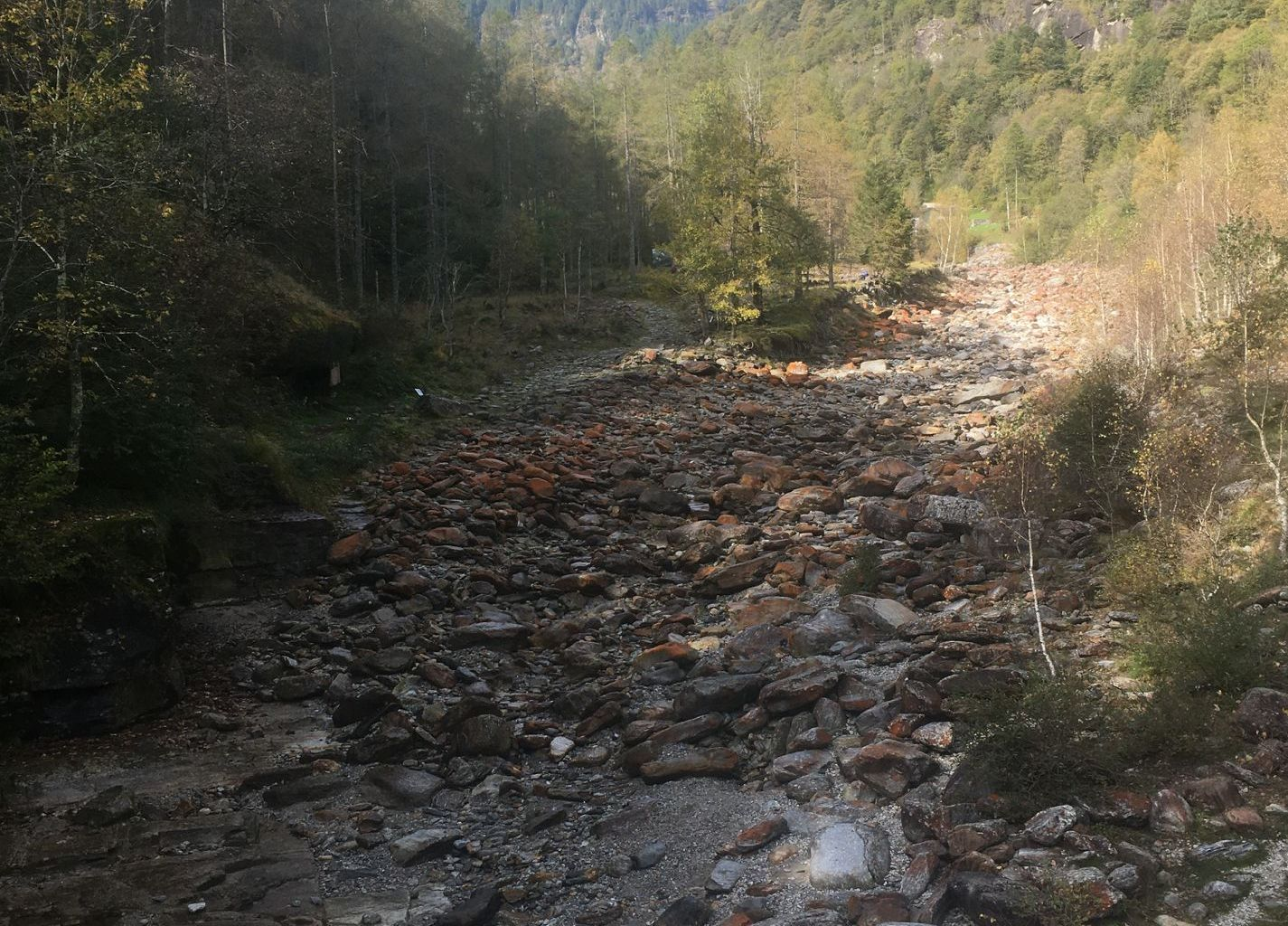 Due to the subsidised use of hydroelectric power, water is now being diverted from many mountain streams for power stations. This impairs the passability of water courses and disturbs the flow dynamics. As a result, biodiversity is reduced.