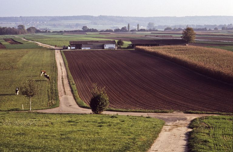 agriculture field agrarian landscape